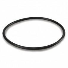 Уплотнительное кольцо для стальных корпусов (10SL)